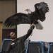 Minnesota Raptor Center Program
